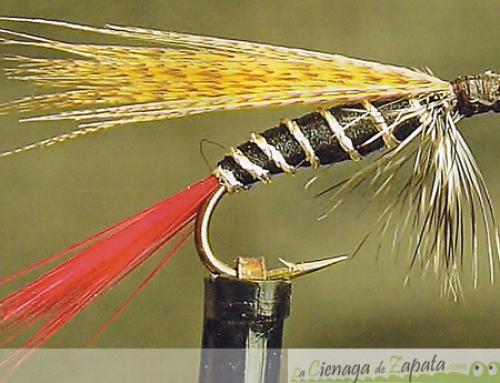 Fly Fishing in La cienaga de Zapata