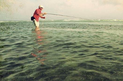 Fisher Man Hatiguanico