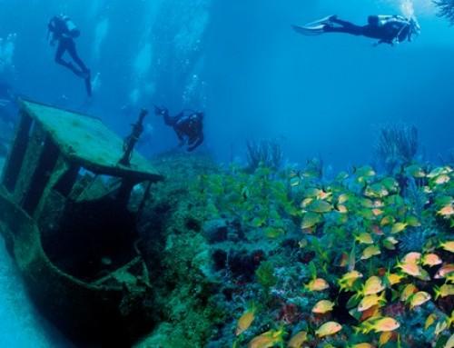 Diving & snorkeling in the Bahia de Cochinos